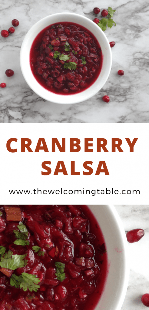 overhead shot and closeup of a white bowl with cranberry salsa